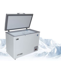 - 60c comerciano Parte-Aprono il frigorifero del surgelatore della cassa per i frutti di mare di memoria