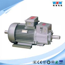 Fase 3, el tipo de motor de inducción de anillo de deslizamiento Jzr2-63-10ª Capacidad 50kw Tensión de estator 380VAL (Star) y corriente del estator 117A, en el Rotor Rotor 144 A la tensión de 216V IP65