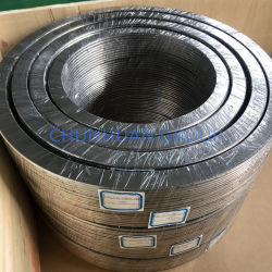 Основной тип SS316 кольцо наливной графит спираль рана прокладку