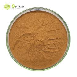 Supplemento di erbe estratto di radice di Marshmallow polvere