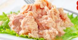 참치 캐닝 공장 영양이 풍부하고 위생적인 참치 생선과 야채 콩기름 주스