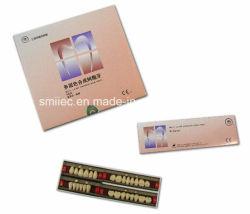 Shangchi camada três dentes sintético dos dentes de acrílico com marcação CE