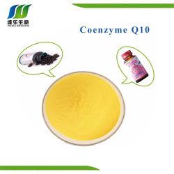 La coenzima Q10 el 10% Polvo Nº CAS 303-98-0.