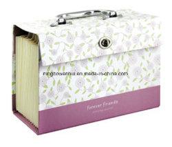 Las carpetas de archivos papel ampliable de 18 bolsillos/Archivo de la organización