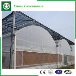 Коммерческие пластиковую пленку выбросов парниковых газов для овощей