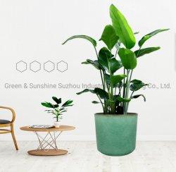 Лучшая цена оптовой экологически безопасные Modern Home оформление балкон овощные сеялки керамические застекленные прямой пластиковый цветочный сад потенциометра растений потенциометра сеялки