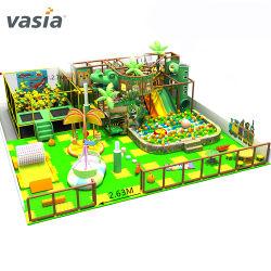 Speelplaats van het Vermaak van de Thema's van de Jonge geitjes van ASTM de Norm Goedgekeurde China Indoor&Outdoor