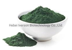 Venta directa de fábrica de óxido de cromo en el pigmento verde en polvo de óxido de cromo /