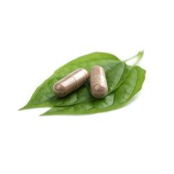 Bilberryのエキスのアントシアニン25%カプセルOEM
