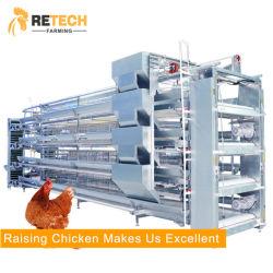 Attrezzatura automatica di fattoria di pollame batteria strato di uovo Cage di pollo per Galline ovaiole