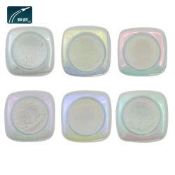 Glimmerpulver-Industrie-Perlen-Pigment für Drucken und Plastik
