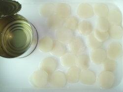 Água enlatada fatia de castanheiro melhor delicioso com vegetais OEM Service