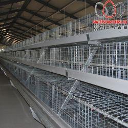 Filipinas Las aves de granja de pollos de aves 108 Tipo de batería de 3 niveles de un sistema de jaulas de Pollos Parrilleros