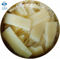 Canned Bamboo Shoot fetta
