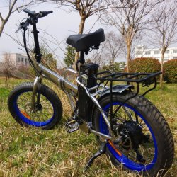 """Bicicletta elettrica da spiaggia con tasca pieghevole da 20"""" con pneumatici FAT"""