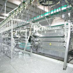 2000bph usine de transformation de volaille / Pansement Poulty plante