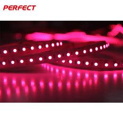 매직 드림 컬러 SMD 3838 DC 24V 방수 RGB LED 유연한 스트립 조명