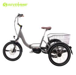 2020 gebruikte de Nieuwe Familie van het Ontwerp Elektrische Driewieler voor Verkoop