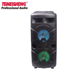 Temeisheng privates Minidoppeltes 6.5 Zoll-Berufskaraoke beweglicher Bluetooth Lautsprecher-Kasten mit drahtloser PA-Tonanlage