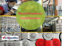 De Controle van de fabriek en De Controle van de Kwaliteitsbewaking in Shanghai