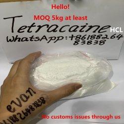 Zuivere Tetracaine USP Bp StandaardHCl Tetracaine van 99%