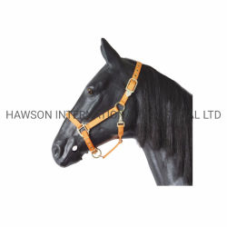 Deluxe Nylon Halter/Pferdehalter