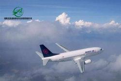 China zu Amerika, Kanada und Mexiko DHL UPS Federal Express TNT Expressdienst