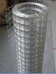12bwg Elektr Verzinkt hell geschweißt Drahtgitter hohe Qualität geschweißt Drahtgeflecht Factory