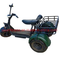 L'agriculture Wagon Fat pneu VTT Scooter électrique Tricycle électrique véhicule agricole du fret