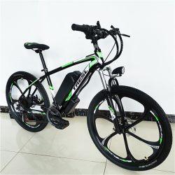 Dirt Bike verwendet Elektro E Fahrrad Elektro-Motor-Bike