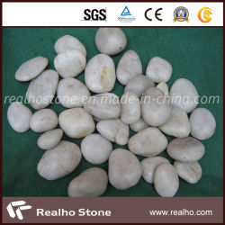 庭のための磨かれた白い小石の石