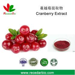 Anthocyandins Powder Cranberry Extract 1% ~ 25%