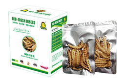Vivir sin alimento para mascotas Eco-Fresh Superworm
