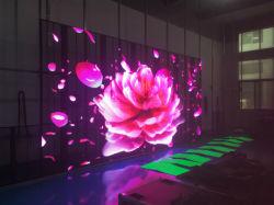 P P3.91/33.96/7.81.91 publicidad transparente de la pared de vídeo LED pantalla LED