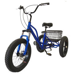 Bajaj 이디오피아… Triciclo 가나 모터 세발자전거에 있는 자동 인력거 건전지 가격