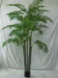 Palmera de alta calidad de las Plantas artificiales de plástico de la simulación de Palm decorativos