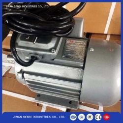 La serie SY Motor asíncrono de freno electromagnético