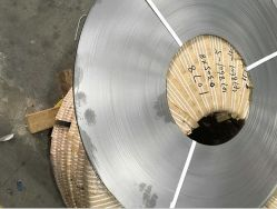 Blatt-Platten-Riemen des Befestigungsteil-Material-201 des Edelstahl-304