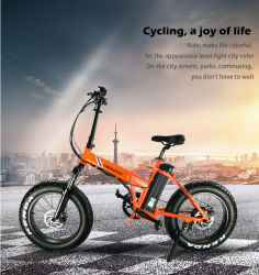 20pouces mini pliable vélo électrique pour la neige/Beach/Mountain utilisé