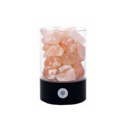 Bella lampada Himalayan naturale intagliata del sale del cristallo di roccia