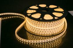 네온 등 12V 24V LED 네온 지구 코드 밧줄 빛이 50m LED 네온 코드에 의하여 RGB RGBW 집으로 돌아온다