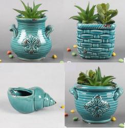 Potenciômetro da Plantadeira de cerâmica Piscina Piscina suculentas Ervas Decoração Floral