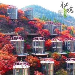 산림 조류의 네스트 유형 건물 자재 구조 모듈식 모바일 하우스 반장집