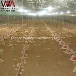 Automatique du matériel agricole de la Volaille Poulet pour la vente de carter du convoyeur