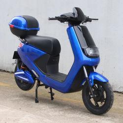 セリウムの証明書の貨物ボックスが付いている電気スクーターのバイク