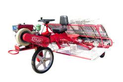 8 filas caballo tipo arroz Paddy Transplanter máquina