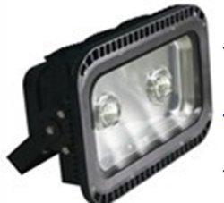 مصباح الغمر LED الضوئي COB عالي الطاقة للاستخدام في الأماكن الخارجية