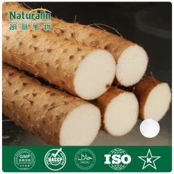 100% natürliches geläufiges Yamswurzel-Auszug-Puder (8%-95% Diosgenin)