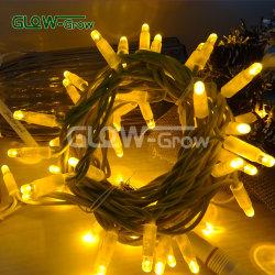 عيد ميلاد المسيح سلك مطاط LED سلسلة قابلة للتوصيل 230 فولت مقاومة للماء خيط ضوء للعروض ، مطعم ، عطلة الديكور مع فلاش لمبة 4+1