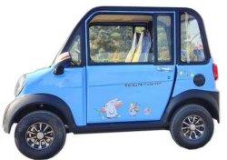 حماية البيئة أقل أسعار السيارات الكهربائية في الطريق الأيمن